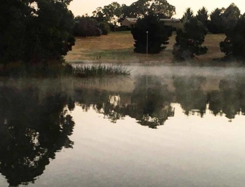 Smoke on the water. Something a little bit eerie …